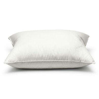 Cuscino rigido (alto)